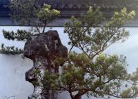 松江醉白池
