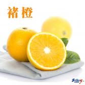 正宗褚橙(预售)(XL型)5kg