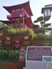 扬州园博会城市展园中面积最大的园林———扬州园