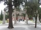 曲阜孔庙印象