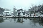 《红梅公园雪景》