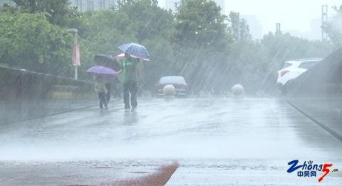 龙城小小讲解员:风雨无阻 真诚奉献