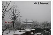 雪后红梅公园