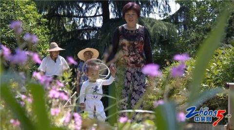 谈英华家庭:自费数万元改造荒地 绿树成荫惠及乡亲