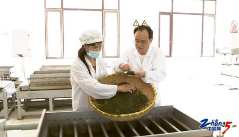 种茶人缪惠民:带领农民创业致富的理事长