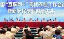 江苏现代农业增添新动能