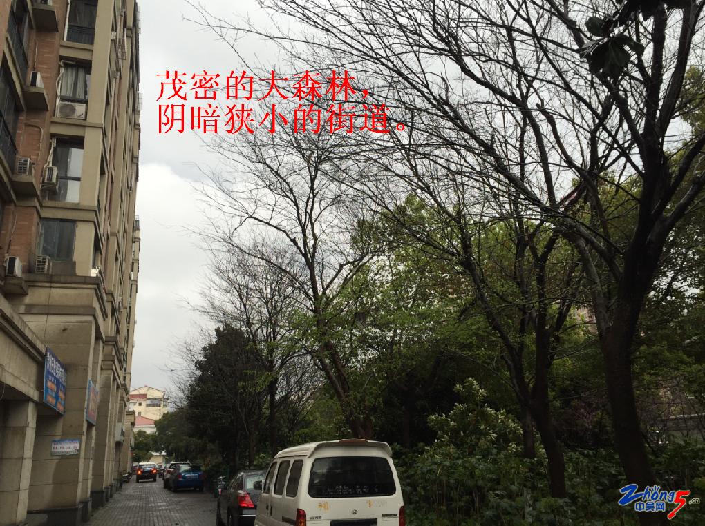 街面.png