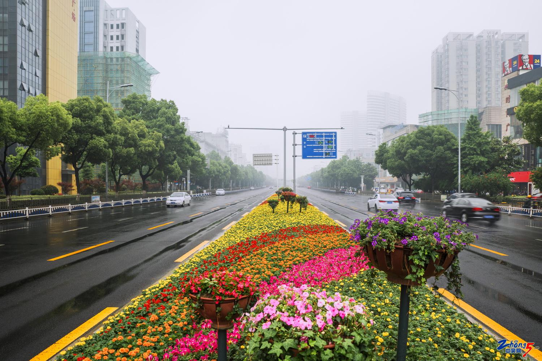 .(春季)题目:通江路。地点:常州市通江路,拍摄者:胡乾,电话:13906118235.jpg.jpg