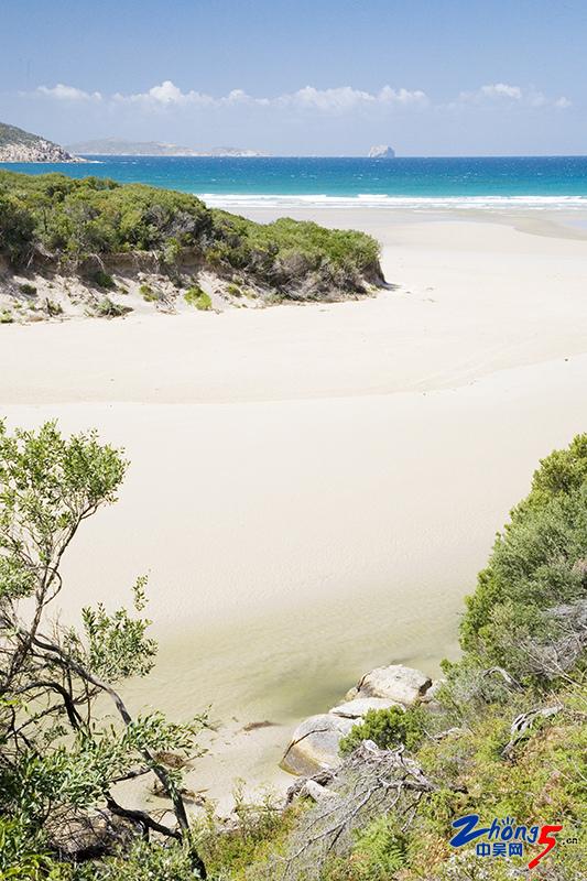 沙滩 (14).jpg