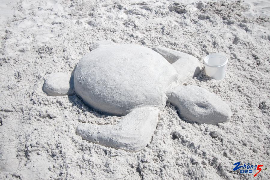 沙滩 (17).jpg