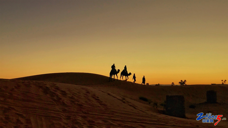 归 iPhone7P 李霞 13861170709 2019年2月撒哈拉沙漠.JPG