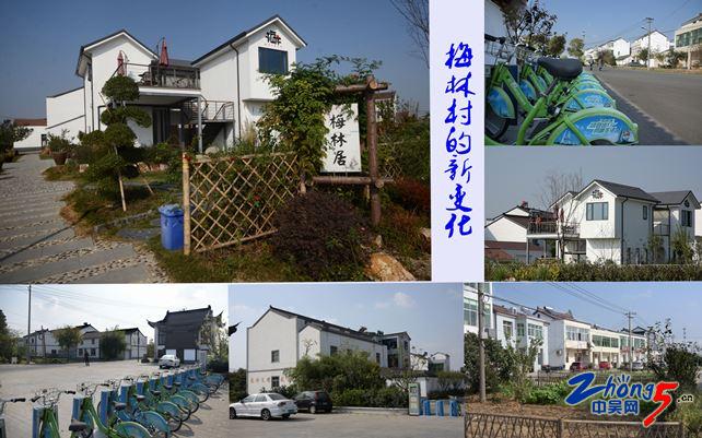 梅林村的新变化NeoImage_副本.jpg