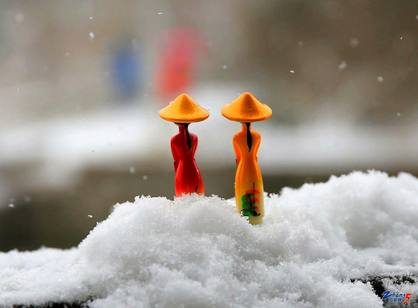 《观雪》 李志洲.jpg