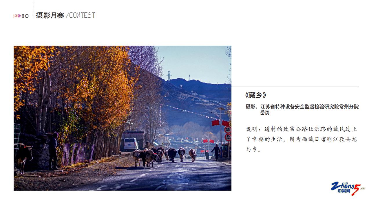"""2021.1《中国公路》全国月赛获奖""""藏乡""""岳勇.png"""