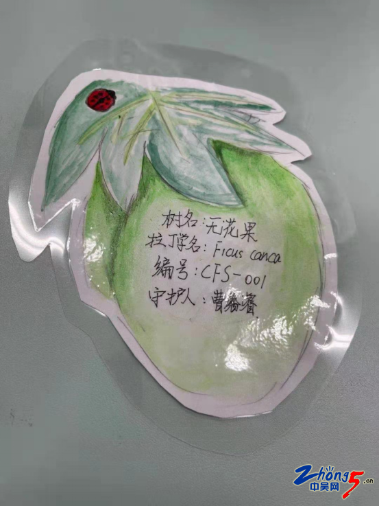 纸上得来终觉浅,绝知此事要躬行——《三江口公园生物多样性保护》课程系列活动(二).png