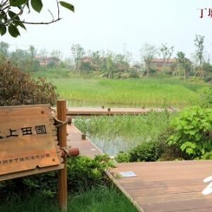 """丁塘河湿地公园——曼妙诱惑的城市""""乡野""""图"""
