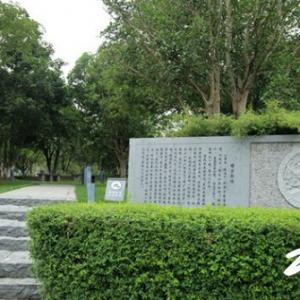 西林公园——享受生活也有桂花香