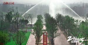 青枫公园——令人沉醉的四季美景