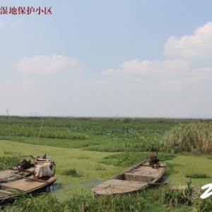 武进区滆湖湿地保护小区