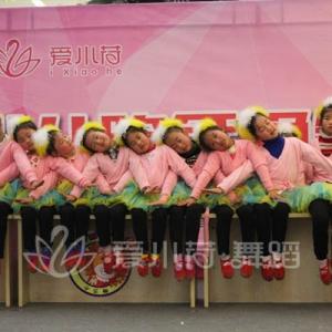 """""""爱小荷""""2015常州少儿跨年晚会节目:《有只孔雀跳落水》"""