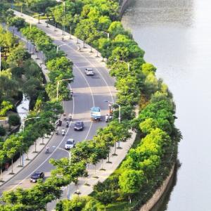 美丽常州·生态绿城篇:绿色恣意是一种别样美