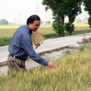 赖清云:30年坚守农业梦