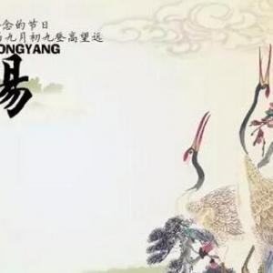 重阳节有哪些习俗?赏菊、插茱萸、吃重阳糕……