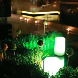 """常州万豪酒店2018""""地球一小时""""活动!关注气候变化,熄灯一小时,点亮环保心"""
