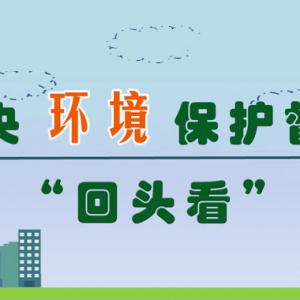 """中央环保督察""""回头看""""边督边改进行时(第十九批)"""