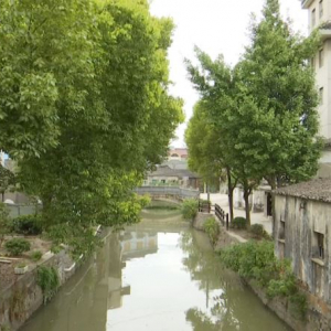 郑陆镇:整治水环境 重现水乡风貌