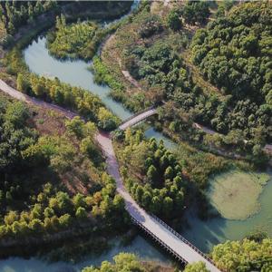 地铁1号线全线开通 新龙生态林迎来大批游客