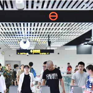 地铁开通 新龙生态林迎来大批游客