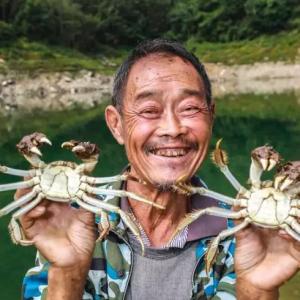 """从江苏到陕西 美食家们""""盲评第一""""的南江湖大闸蟹经历了什么"""
