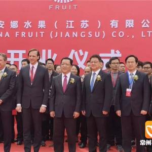 阿果安娜集团对中国最大投资项目在常竣工投产