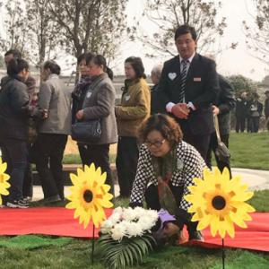 社区书记尹红珍:4年温暖守护9位孤老的生命终点