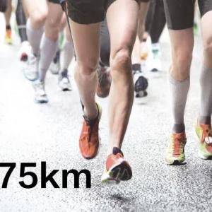 起跑 21.0975km
