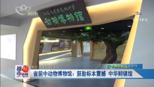 省前中动物博物馆:胚胎标本震撼 中华鲟镇馆