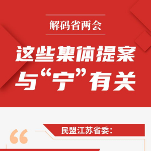 """解码省两会│南京首位度、宁镇扬一体化……这些集体提案与""""宁""""有关"""