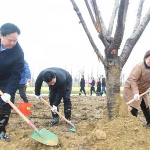 持续推进长江岸线造林绿化 市四套班子领导参加全民义务植树活动